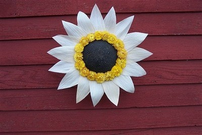 Sunshine Wreath